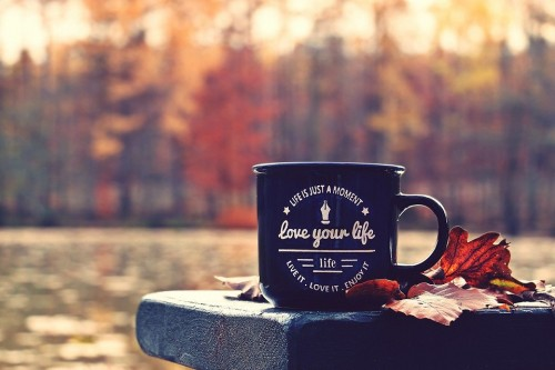 Autumn Forest Cup Waldsee Bench Love Your Life