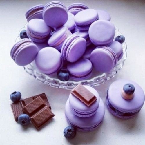 Blueberry Macrons