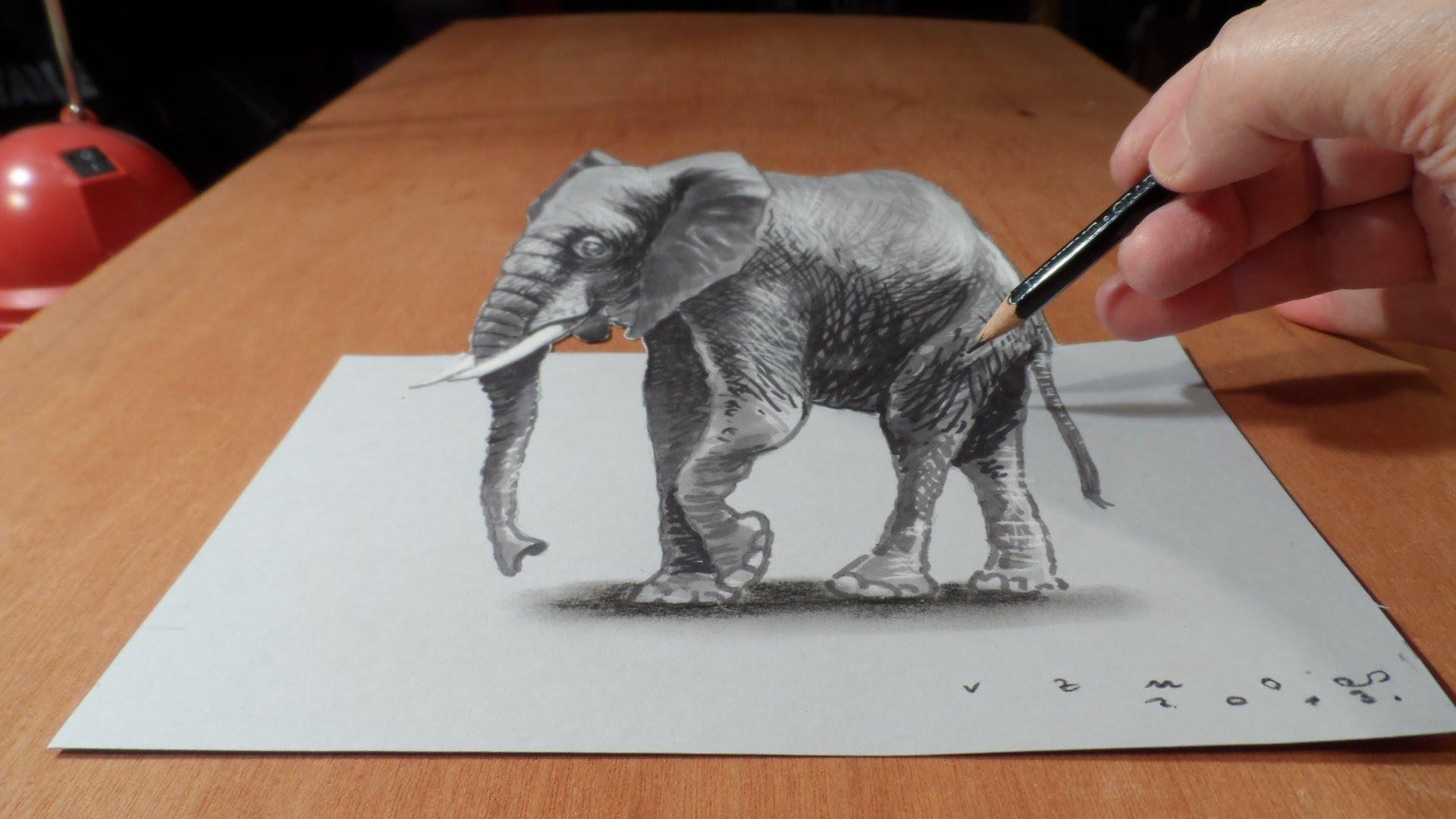 Раскраски Животные Раскраскирф - распечатать картинки
