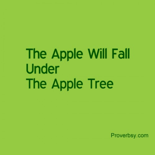 The Apple Will Fall Under The Apple Tree.