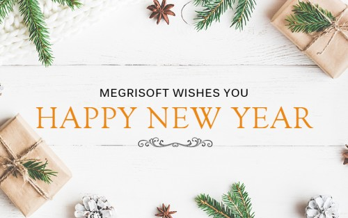 May all your endeavors are met with huge success and appreciation. Here's wishing you a Happy New Year from Team Megrisoft!