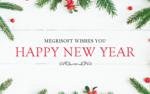 Megrisoft Limited wishes you all a very happy new year 2018.