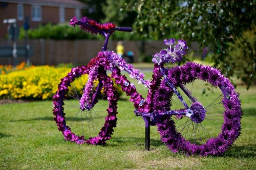 BicylcleFlower.jpg
