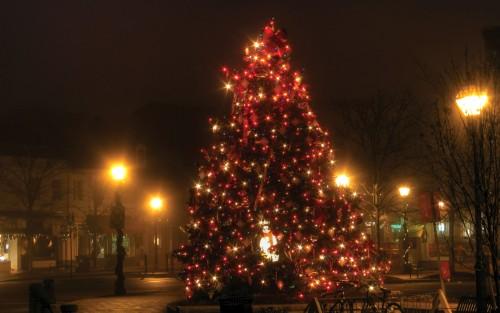 ChristmasTreedecoration.jpg