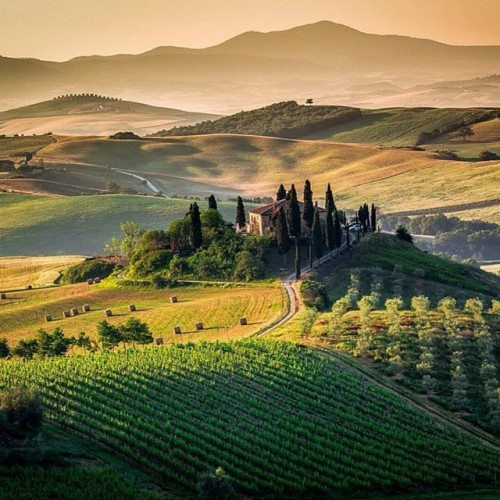 "Tuscany Italy Photo by Francesco Riccardo Iacomino. Italy's Tuscany region is packed with some of the world's most recognizable Renaissance-era art and architecture, including Michelangelo's ""David,"" the works in the Uffizi Gallery and the Duomo basilica of Florence."