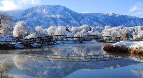 beautiful-winter-scene-296302.jpg
