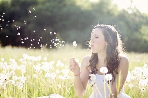 dandelions-609253_640.jpg