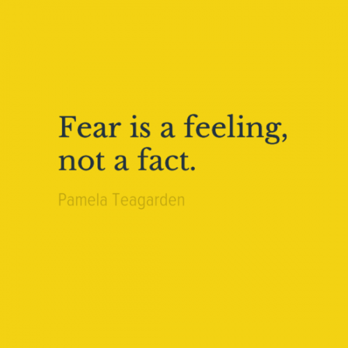 Fear is a feeling, not a fact. Pamela Teagarden Quotes www.quotes9.com