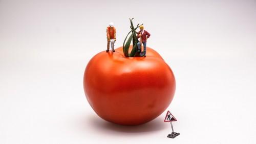 tomato-546989_1280.jpg
