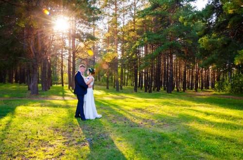 wedding-628515_640.jpg